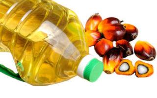 Растительно пальмовое масло вред и польза для организма