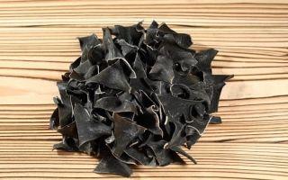 Морская капуста: польза и вред, состав и свойства