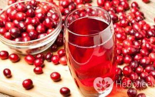 Клюква — ягода: описание, фото, состав, калорийность, полезные свойства