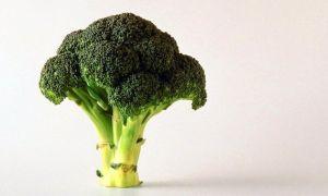 Витамин e в продуктах питания, продукты богатые витамином e