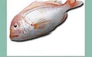 Лещ — состав, калорийность, белки, жиры, применение в кулинарии