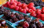 Пищевые добавки с индексом e300: антиокислители, антиоксиданты и регуляторы кислотности