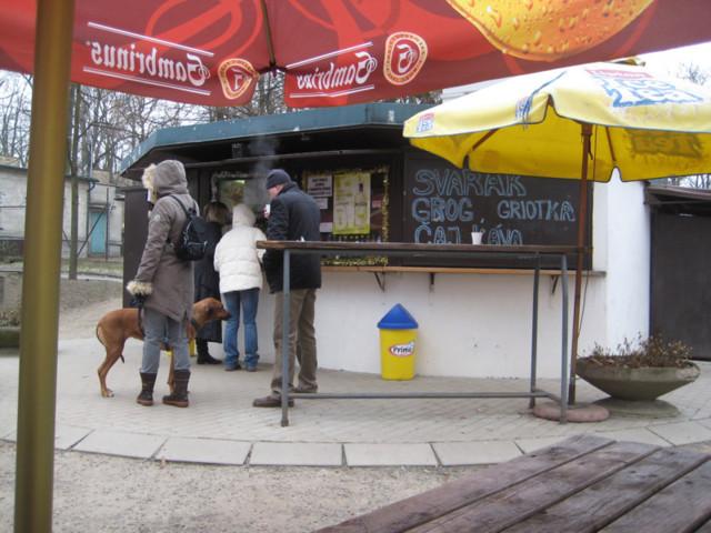 Чешский завтрак – из чего он обычно состоит и где можно позавтракать в Праге