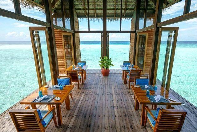10 самых необычных ресторанов мира: описание, меню и цены
