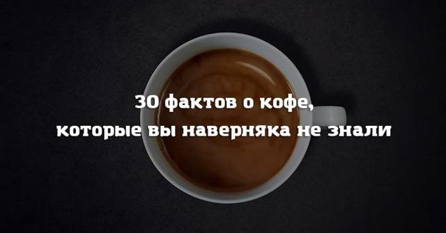 18 интересных фактов о кофе, которых вы не знали