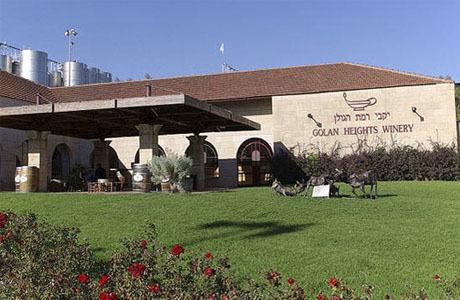 Лучшие вина Израиля – обзор самых известных производителей и марок