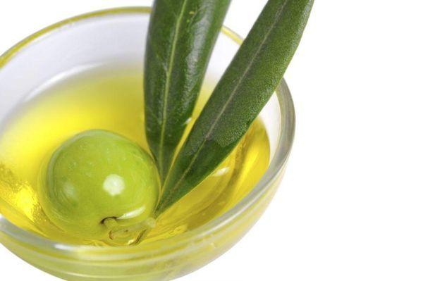 Оливки в Испании – экспресс-гид, посвященный оливковому маслу в стране