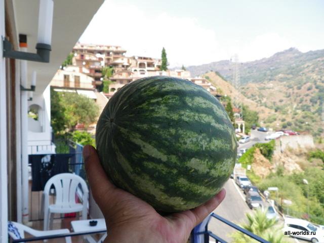 Какие фрукты растут в Италии – список самых популярных и сладких плодов