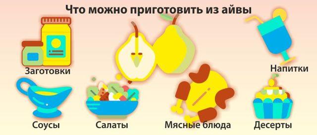 Айва: описание, фото, состав, калорийность, полезные свойства