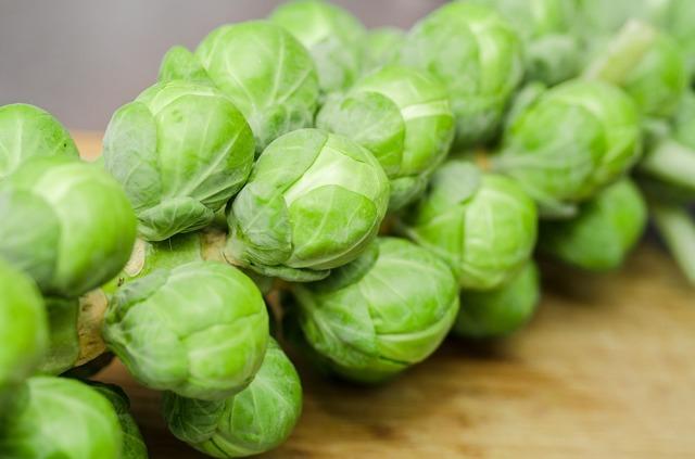 Брюссельская капуста: фото, описание, калорийность, полезные свойства брюсельской капусты