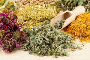 Самые полезные травы от холестерина и народные средства