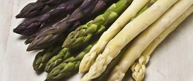 Спаржа: фото и описание овоща, состав, калорийность, полезные свойства и вред