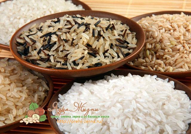 Рис: фото и описание крупы, состав, калорийность