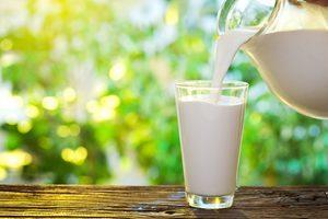 Что такое кисломолочные продукты их виды и свойства