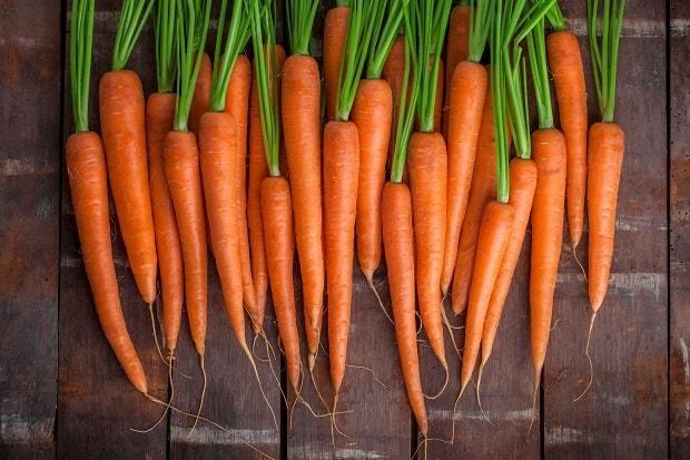 Морковь: состав, калорийность, углеводы, полезные свойства