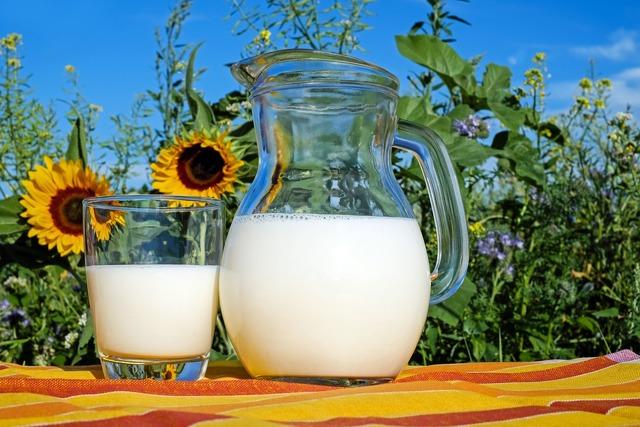 Виды молока название и фото, состав, калорийность