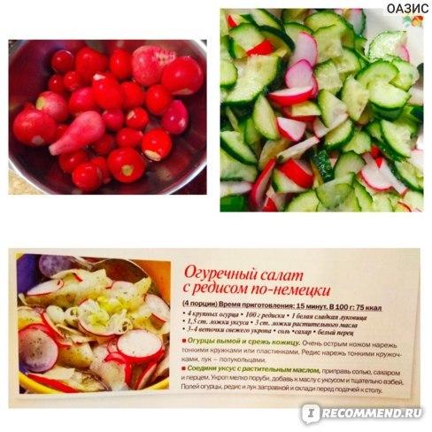 Редис: описание, фото, состав, калорийность овоща