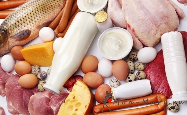 Животные жиры в организме человека, жиры в пищеварительном тракте