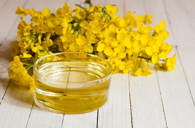 Рапсовое масло: состав, польза и вред, витамины и жирные кислоты