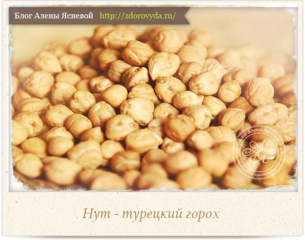 Нут - турецкий горох: полезные свойства и состав