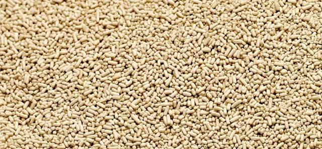 Вред дрожжей хлебопекарных, отличие дрожжей от закваски