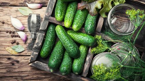 Огурцы: описание, фото, состав, калорийность, полезные свойства