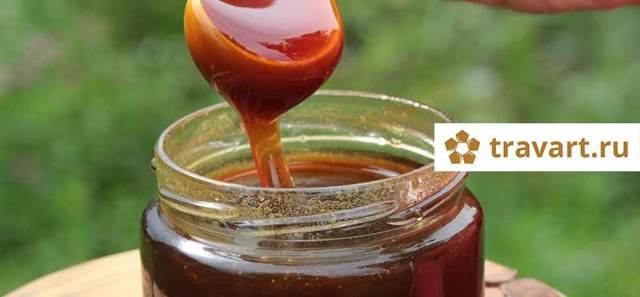 Основные виды меда, что такое искусственный мед