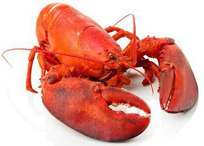 Омар (лобстер): фото, описание, состав, калорийность, полезные свойства и вред мяса