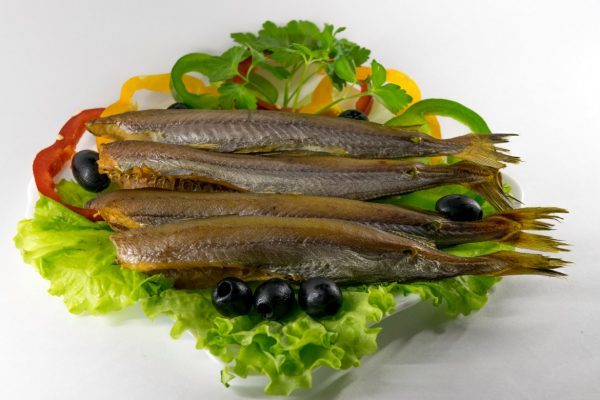 Рыба путассу - фото, описание, польза, состав и калорийность
