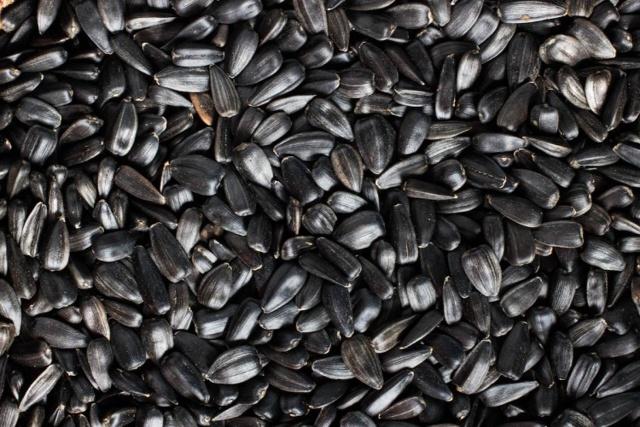 Как получают растительные масла, применение растительных масел в жизни