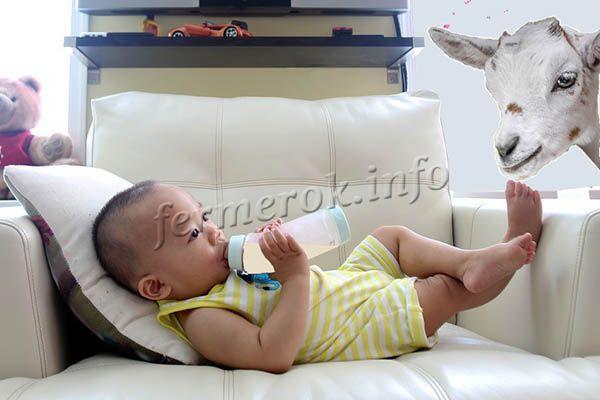 Козье молоко: фото, описание, состав, калорийность. Полезные свойства и вред козьего молока