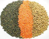 Сера в продуктах питания, роль в организме человека