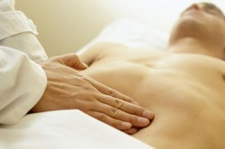 Тонкий кишечник: отделы