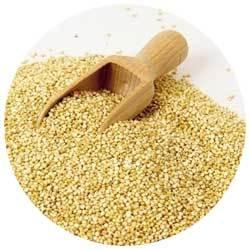 Животные и растительные белки в продуктах питания
