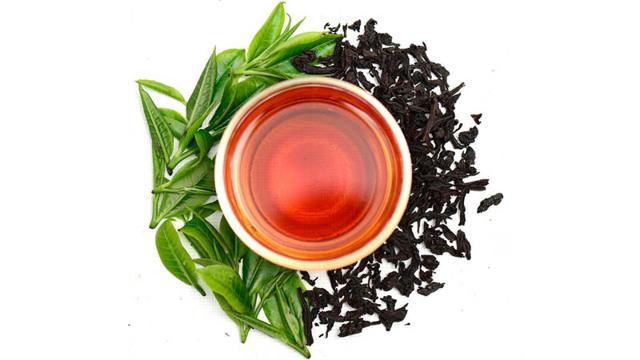 Чай: фото и описание безалкогольного напитка, состав. Полезные свойства и вред чая