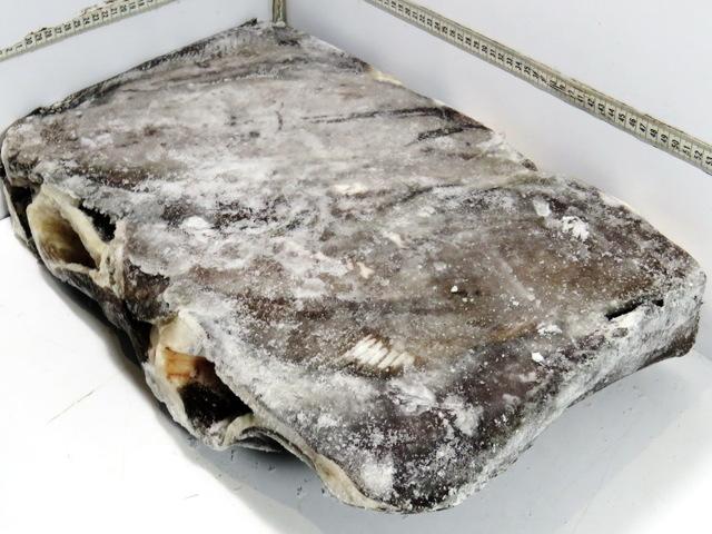 Палтус: фото и описание рыбы, состав, калорийность