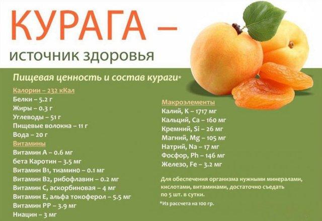 Полезные свойства и вред абрикосов для организма человека