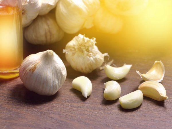 Чеснок: состав, калорийность, витамины, полезные свойства