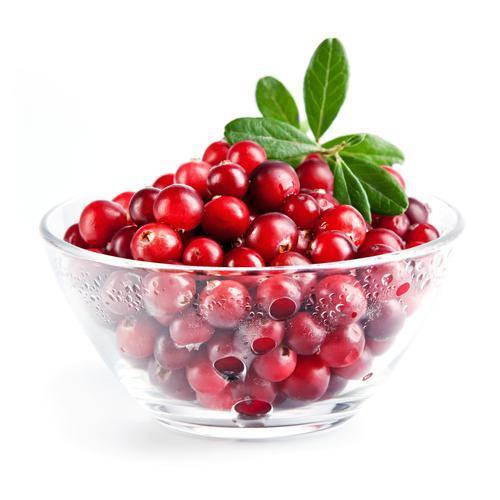 Полезные свойства и вред ягод клюквы