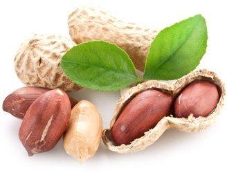 Арахис: фото, описание ореха, состав, калорийность