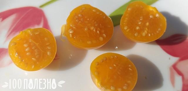 Физалис: описание, фото, состав, калорийность ягод, полезные свойства