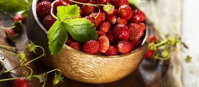 Земляника: фото и описание ягоды, состав, калорийность, полезные свойства и вред
