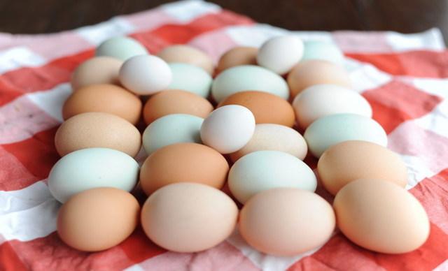 Яйцо куриное: фото, описание, состав, калорийность, полезные свойства и вред