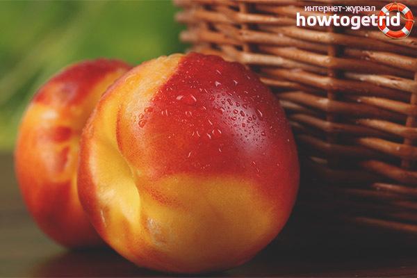 Нектарин: фото и описание фрукта, состав, калорийность, полезные свойства и вред
